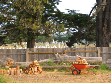Rose Memorial Cemetery, Ft. Bragg, CA 2009